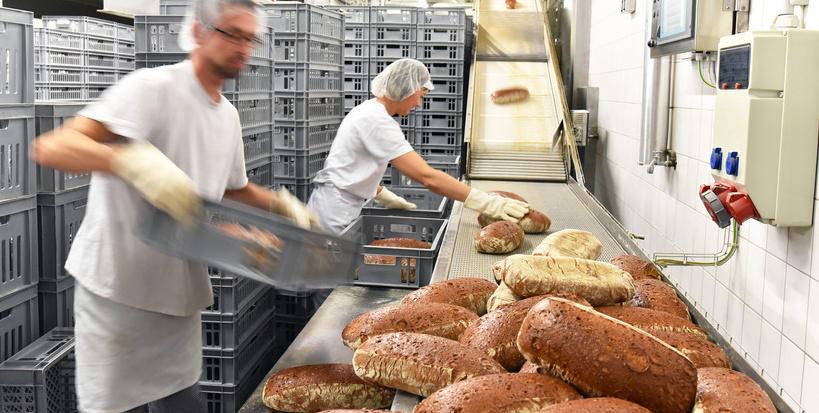 Arbeiter verpacken Brote in einer Grobckerei fr den Transport ins Geschft // baker work in a large bakery - shipping bread